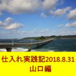 副業せどり仕入れ実践記 ~2018.8.31地元編~