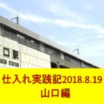 副業せどり仕入れ実践記 ~2018.8.19地元編~